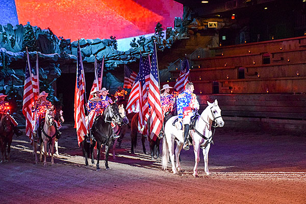 Salute by Dixie Stampede